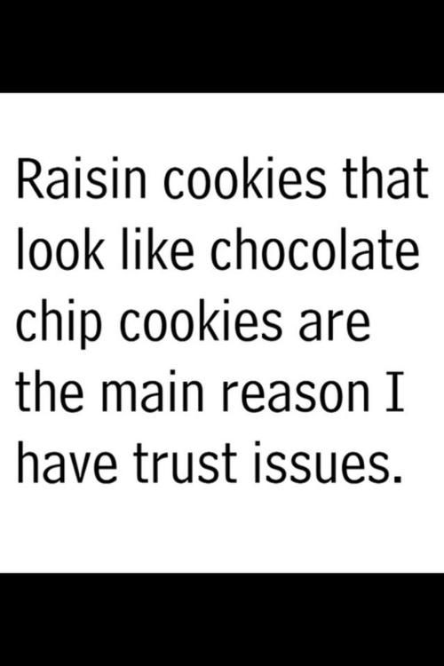 This is so funny AND true!! I adore chocolate chip cookies and while oatmeal raisin are fine, they're not as amazing - sorry to dis you oatmeal raisin!