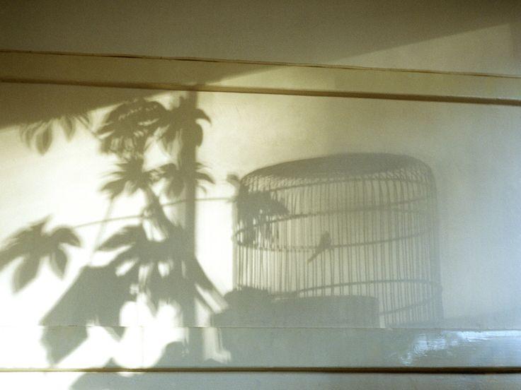 Shadow by Bas Adriaans, via 500px