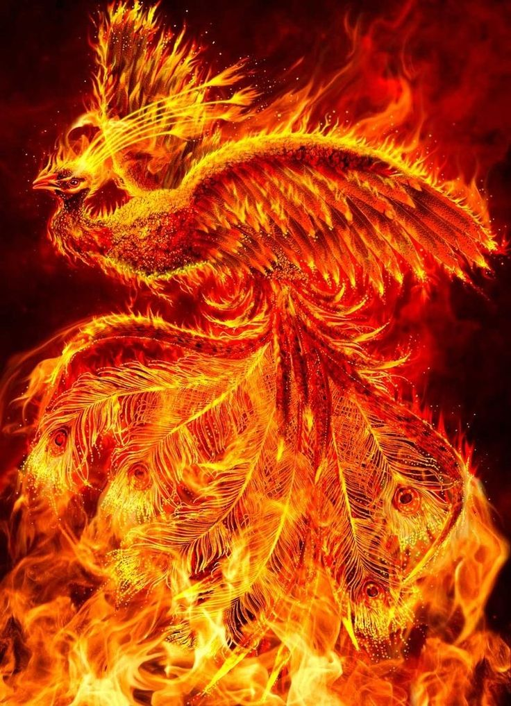 Phoenix is an oracular bird, which can periodically burn up and then regenerate from it's own ashes. It's the symbol of immortality by resurrection. Christians believe that Phoenix is the symbolic model of Christ's Resurrection after three days. To many a Phoenix may represent a new beginning,