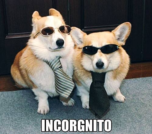 Incorgnito