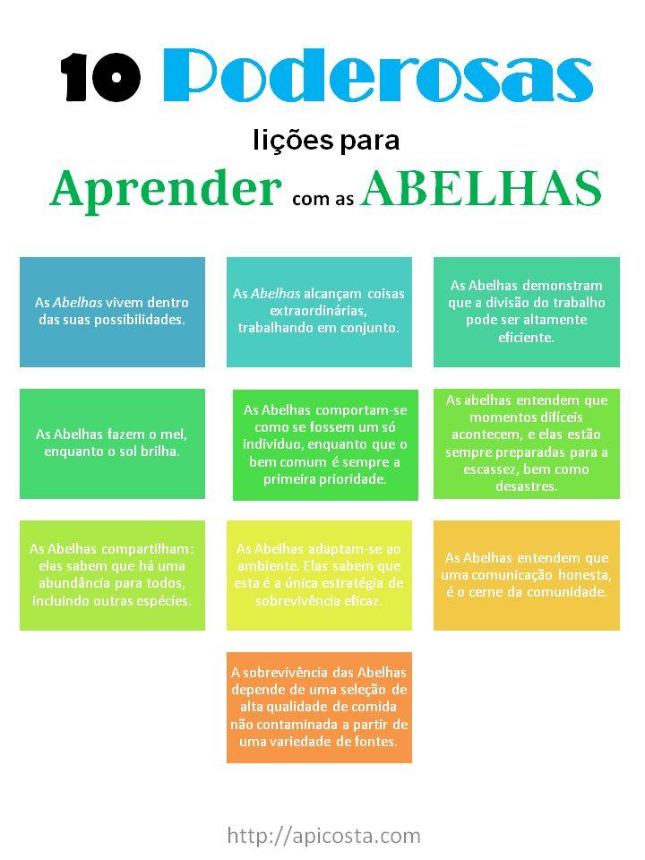 10 Poderosas Licoes Para Aprender Com As Abelhas Abelha
