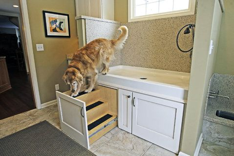 Tully uses the pullout steps to leave the dog-washing station in the remodeled dog room.