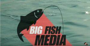 Angeln mit Köderfisch auf Hecht und Zander http://anglerspezi.at/angeln-mit-koederfisch-auf-hecht-und-zander/