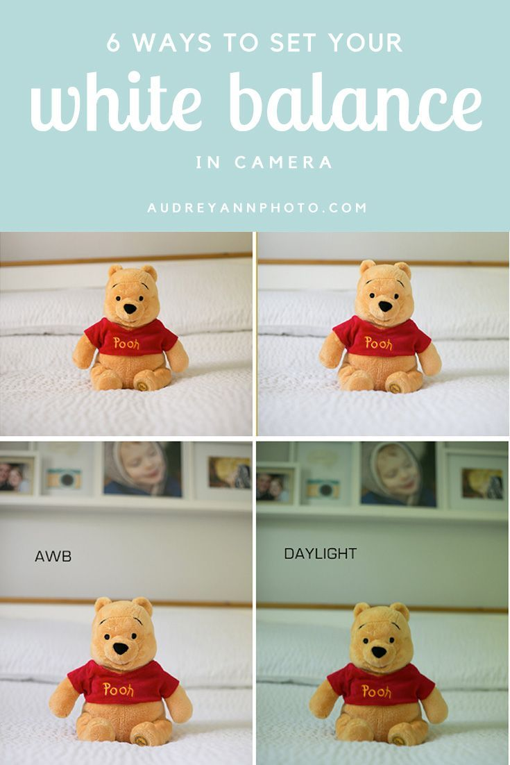 Photography Tips: 6 Ways to Set White Balance in Camera
