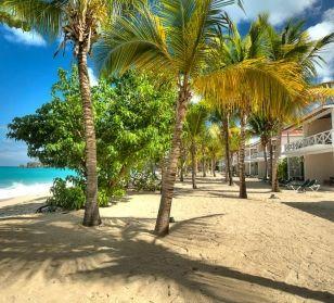 Antigua, isola che conserva lo spirito delle Indie Occidentali, famosa per le sue numerose spiagge di sabbia bianca o dorata... una per ogni giorno dell'anno!