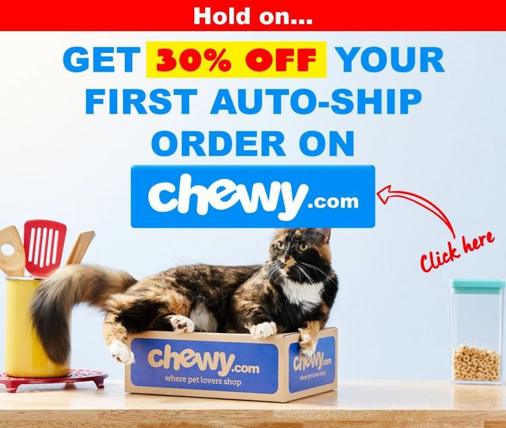 4health cat kitten food coupons review recalls 2020