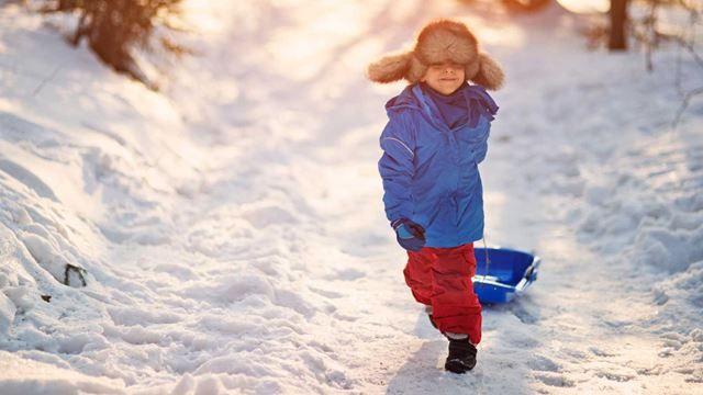 Sneen kommer: 12 gode kælke og bobslæder | Kiddly