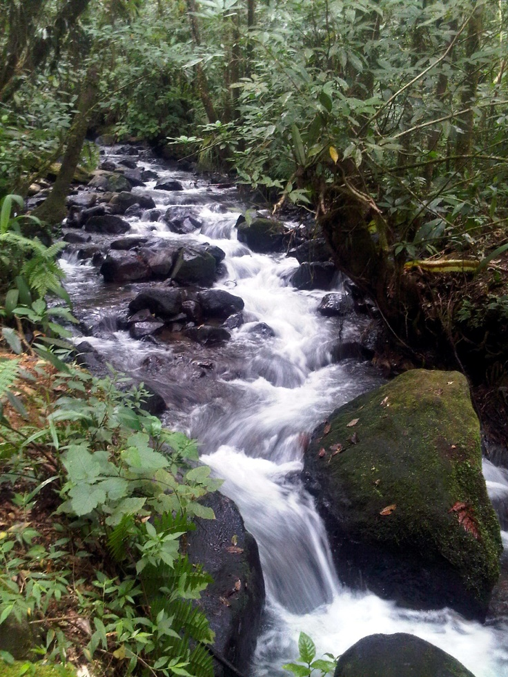 Cibeurem waterfall @Cibodas, West Java, Indonesia