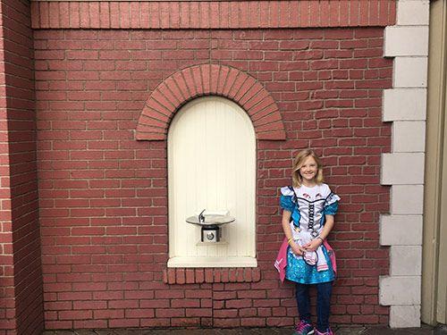 Secrets of Disneyland Brick Test Wall