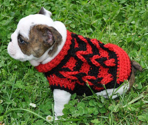 25 Unique Small Dog Sweaters Ideas On Pinterest Crochet