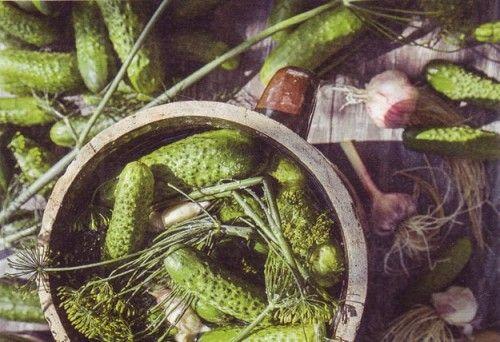рецепт малосольных огурчиков на минералке