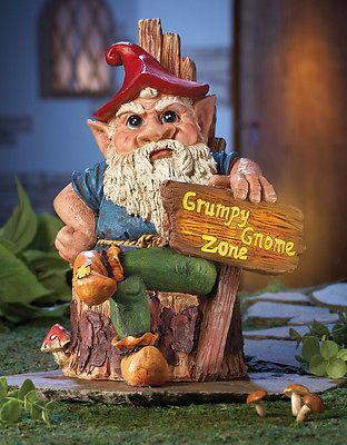garden gnome ...