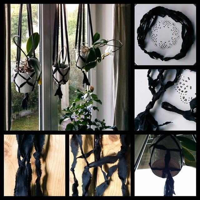 Hanging planter. Very easy way to make one. I made these today and one more that's not on the picture.