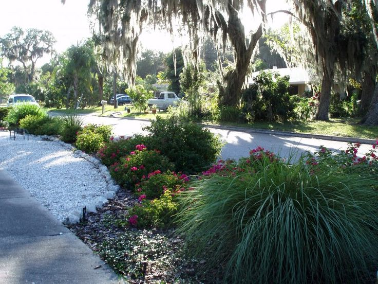 Xeriscaping Florida | Examples Of Our Xeriscaping Solutions By Driveway. Florida  LandscapingLandscaping IdeasXeriscapingDrivewaysPatiosOutdoor ...