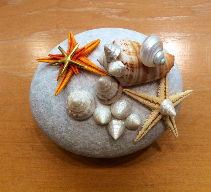 Paper weight made of a sea stone and decorated with sea shells and golden detail.