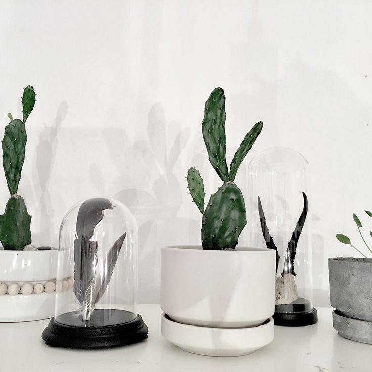 Livingroom, greens