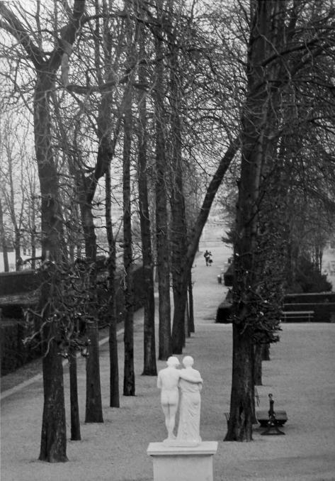 thirtynoire:  Parc de Saint Cloud 1981  photo-Edouard Boubat