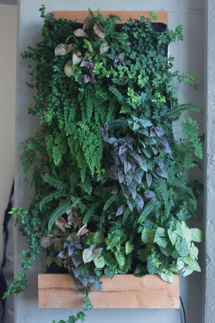 7 Foot Tall Vertical Garden In 2020 Vertical Garden Vertical Garden Indoor Hanging Plants Indoor