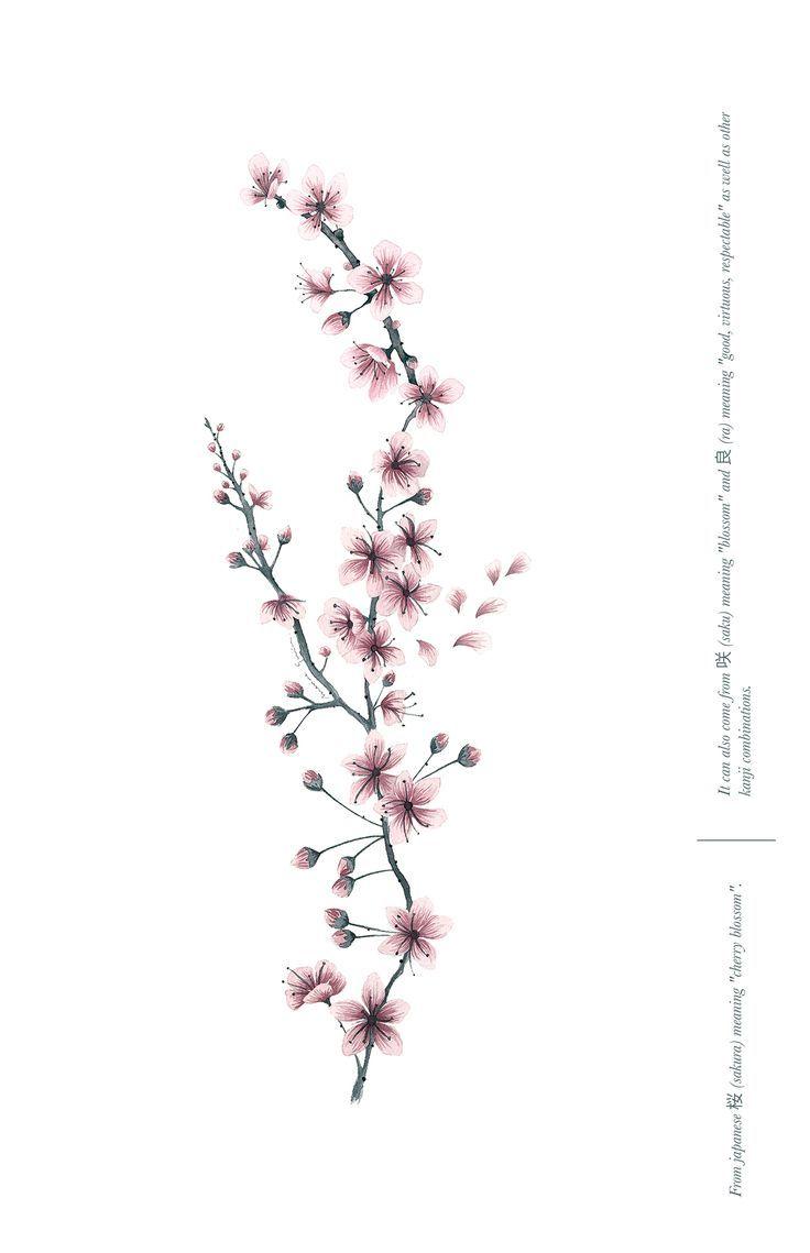 Cherry Blossom Print Sakura Meaning Poster Marina Guiu On Behance Cherry Blossom Print Sakura Pattern Design