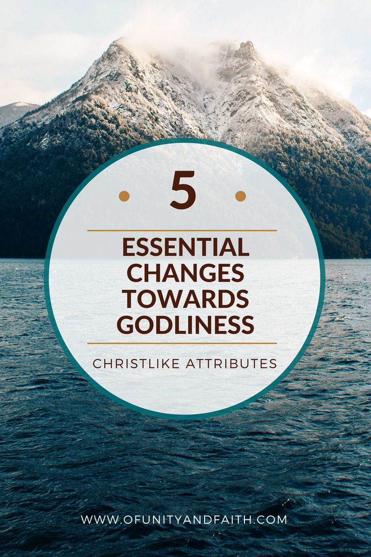 Five Essential Changes towards Godliness. Christlike attributes. Christlike. Christlike attributes evaluation challenge. I'm trying to be like Jesus. Jesus Christ. Savior. Holiness. His grace is sufficient. Grace is sufficient. Stand in holy places. Make the change. Faith. Virtue. Knowledge. Temperance. Patience. Godliness. Brotherly kindness. Charity. Faith blogger. Christian blogger. LDS blogger. Of unity and faith.