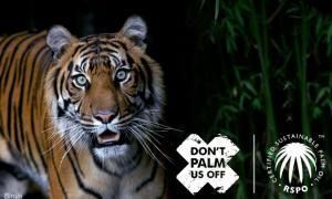 Don't Palm Us Off CSPO Tiger