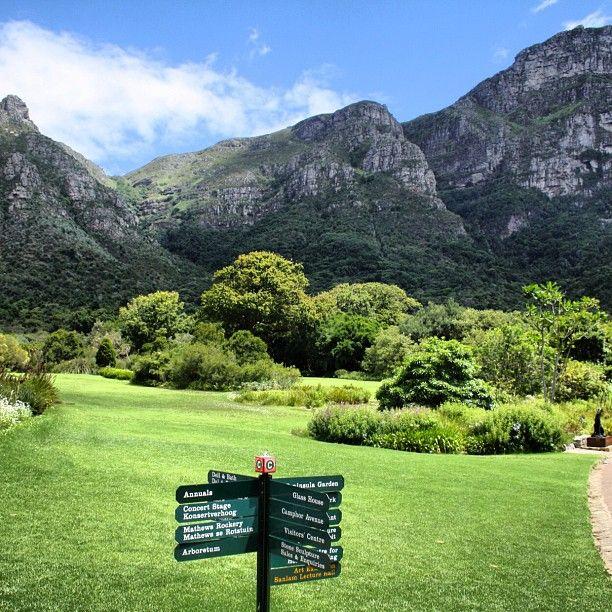 Cape Town's stunning Kirstenbosch Botanical Gardens #capetown #lovecapetown