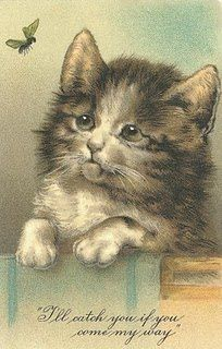 sweet kitty vintage post card ...