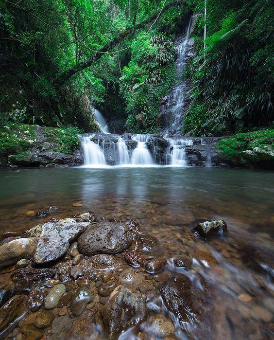 (110) Elabana Falls, Lamington National Park