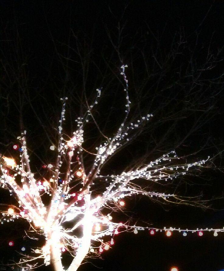 Nicole (@ NicFrances) - Profile on EyeEm Christmas Lights at the local shops - Marino Dublin, Ireland