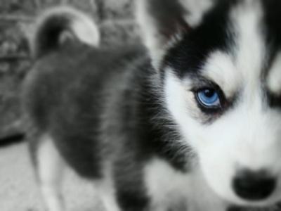 So gorgeous