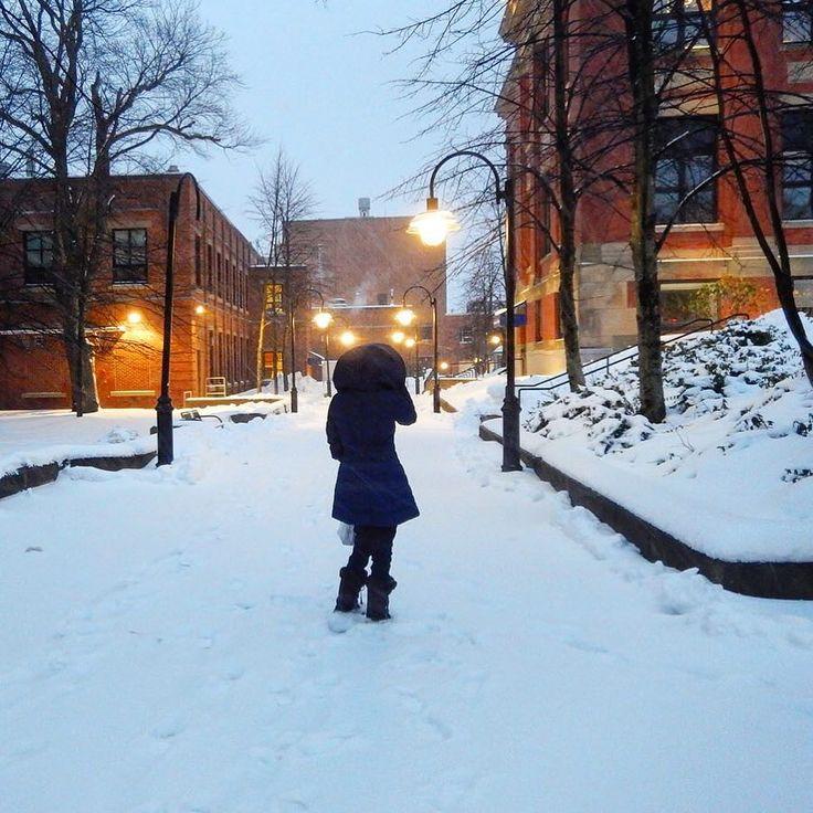 Día nevado / Snowy day #travel #viajar #viaje #tipsdeviajero #travelblogger #Halifax #VisitNovaScotia Con @happiesttraveler by tipsdeviajero