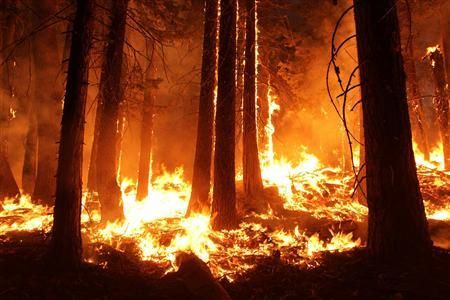 The Rim Fire burns at night in this undated United States Forest Service handout photo near Yosemite National Park, California, released to Reuters August 31, 2013. REUTERS/Mike McMillan/U.S. Forest Service/Handout via Reuters