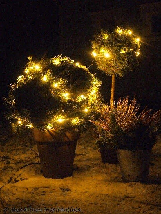 Havupallot - havukoristeet - outdoor deco - piha - pihavalot - jouluvalot - havut - christmas lighting outdoor