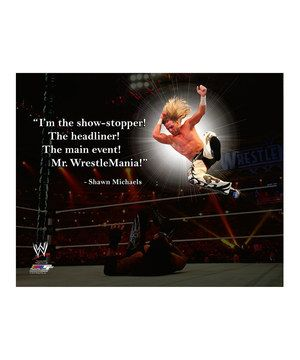Another great find on #zulily! Shawn Michaels Pro Quote Canvas by Photo File #zulilyfinds