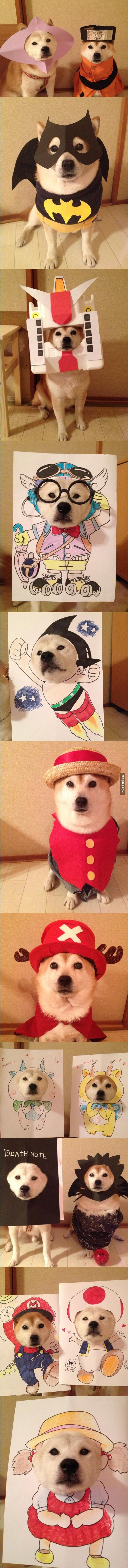 11 Adorable Shiba Cosplays That Are Much Cute, Very Wow