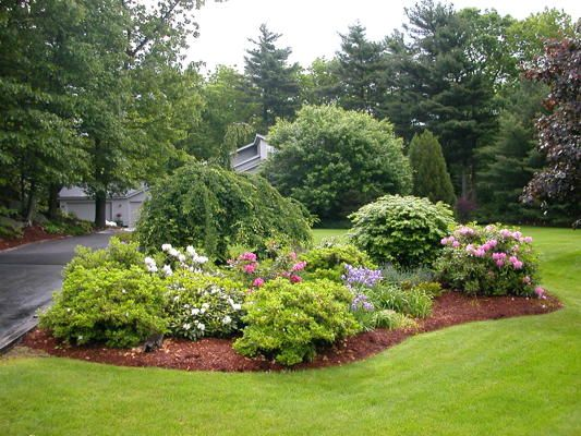 beautifully designed shrub groupings near driveway greet family and