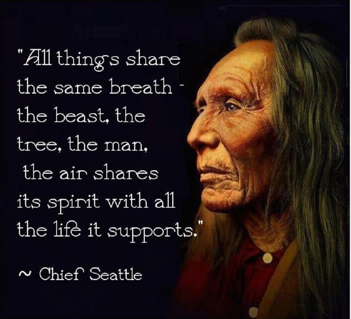 the respect of native americans for land and life The wisdom of native elders is contained in the seven philosophies and is offered to native american men so  the cycle of life for the  dignity and respect.