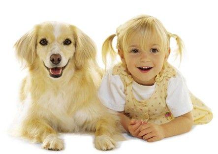 Je n'ai jamais compris ce travers qui consiste à opposer chiens et chats. J'aime donc les chats, comme dit sur un autre tableau, et les chiens aussi ! Eric, http://eric-lequien-esposti.com