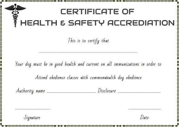 Pet Health Certificate Template Word
