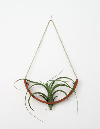 Hanging Air Plant Cradle, Natural TerraCotta Planter Vase by Mud Puppy - $36