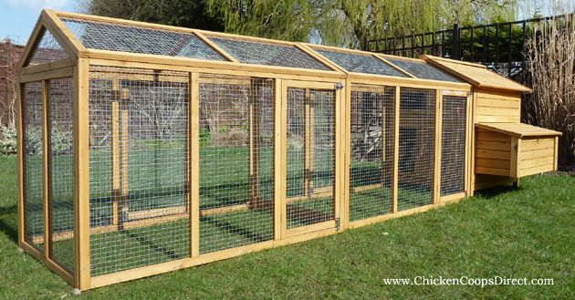 Extra Large Chicken Coops | ... and is able to comfortably house up to 5 to 6 medium sized chickens