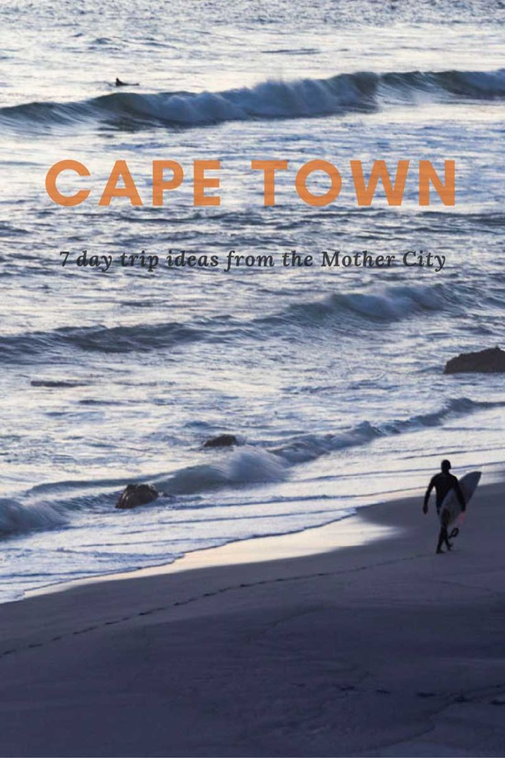 The best Cape Town Day Trips - Road Trip the Cape Peninsula and find out what to do around Cape Town!