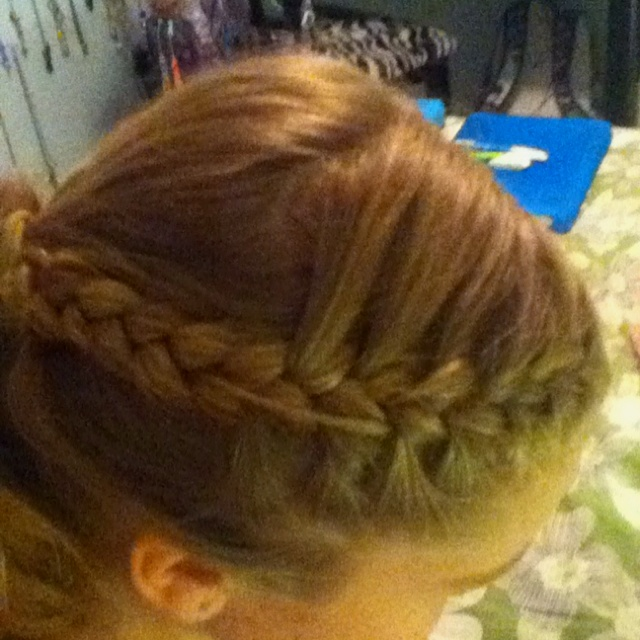 french normal braid into high ponytail hair styles