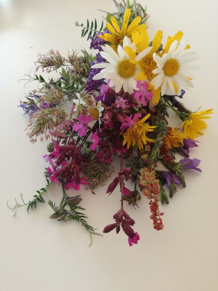 Meadow. Wild flowers. Bouquet. Colors.