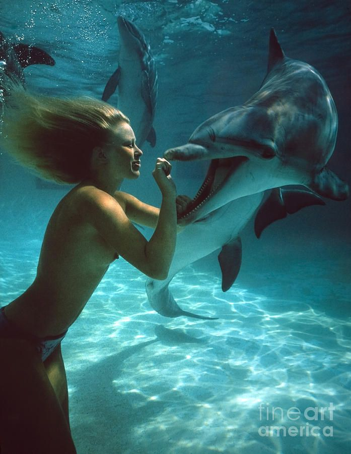 Women make sex with dolphin, a teacher fuck mother and daughter on porn