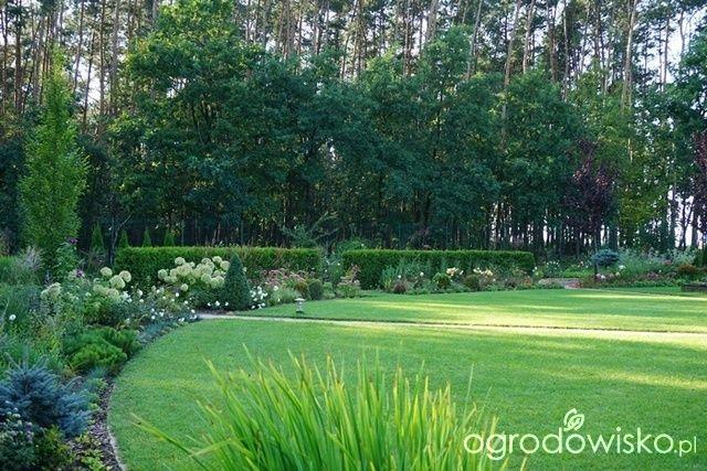 Jak zamienić glinę w wymarzony skrawek Ziemi. - strona 514 - Forum ogrodnicze…