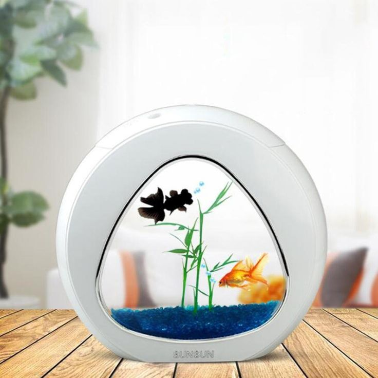 17 best images about aquariums fish bowls and fish tanks for Fish aquarium supplies