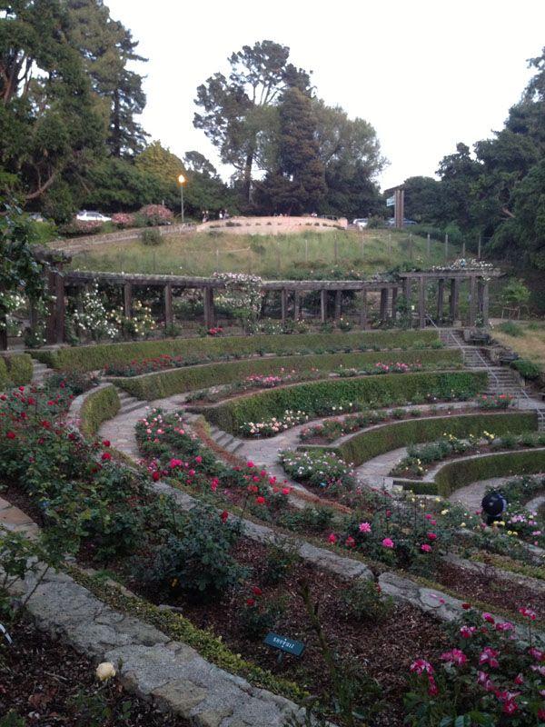 Excellent Flower Adventures Berkeley Rose Garden Morcom Rose Garden Gorgeous Gardens Rose Pictures Garden
