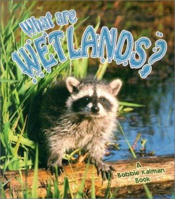 This book investigates some types of wetlands, including swamps, marshes, bogs, and fens; the many plants and animals that live in wetlands; and the threats to these ecosystems.