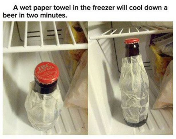 30 Best Fun Facts Images On Pinterest Fun Facts Random